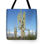 Saguaros With Green Grass Tote Bag