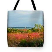 Sail Boat Honeymoon Island Tote Bag