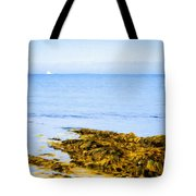 Sailboat Off The Ovens Tote Bag