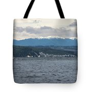 Sailing Lake Taupo Tote Bag