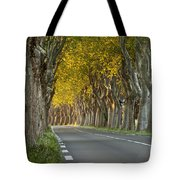 Saint Remy Trees Tote Bag
