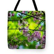 Sakura Tree In Bloom - Featured 3 Tote Bag