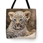 Salayexe's Cub Tote Bag