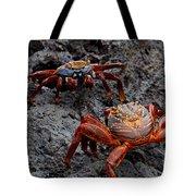 Sally Light Foot Crabs Galapagos Tote Bag