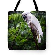Salmon Crested Cockatoo Tote Bag by Sennie Pierson