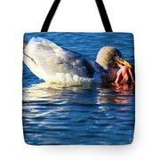 Salmon Delight Tote Bag