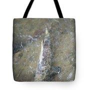 Salmon Spawning Tote Bag
