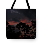 Salmon Sunset Tote Bag