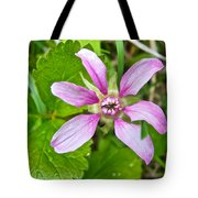 Salmonberry  On Trail To Wapta Falls In Yoho Np-bc  Tote Bag