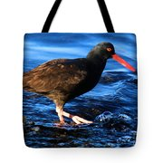 Salt Creek Catcher Tote Bag