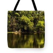 Salt Creek In August Tote Bag