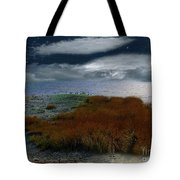 Salt Marsh At The Edge Of The Sea Tote Bag by RC DeWinter