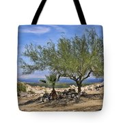 Salton Sea Oasis Tote Bag