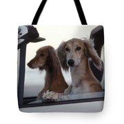 Saluki Dogs In Car Tote Bag