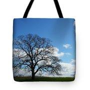 Same Tree Many Skies 11 Tote Bag