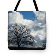 Same Tree Many Skies 13 Tote Bag