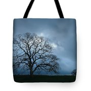 Same Tree Many Skies 14 Tote Bag
