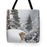 San Jacinto Winter Wilderness Tote Bag