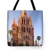 San Miguel De Allende, Mexico Tote Bag
