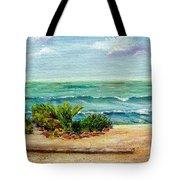 San Onofre Beach Tote Bag