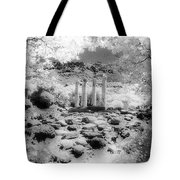 Sanctuary Of Gods And Goddesses Tote Bag