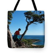 Sand Beach From The Beehive Tote Bag