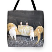 Sand Crab Up Against The Sidewall Tote Bag
