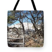 Sand Dune With Trees Tote Bag