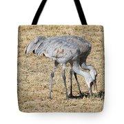 Sand Hill Cranes Eat Togeather Tote Bag