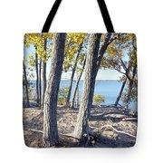 Sandbanks Provincial Park Tote Bag