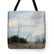 Delaware Sand Dune Tote Bag