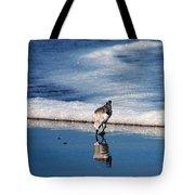 Sanderling 003 Tote Bag