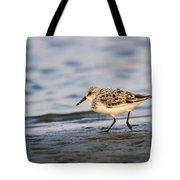 Sanderling Tote Bag