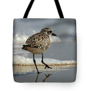 Sanderling Gulf Of Mexico Tote Bag