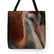 Sandhill Baby Face Tote Bag