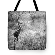 Sandhill Chick In The Marsh - Black And White Tote Bag