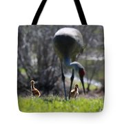 Sandhill Chicks Under Foot Tote Bag