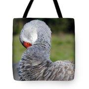 Sandhill Crane Tote Bag by April Wietrecki Green
