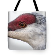 Sandhill Crane Eye Tote Bag