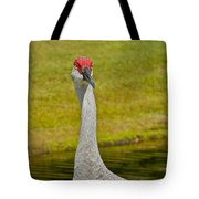 Sandhill Crane Face-on Tote Bag