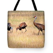 Sandhill Crane Family I Tote Bag