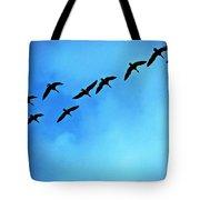 Sandhill Crane Flyover Tote Bag