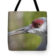 Sandhill Crane Grus Canadensis Tote Bag