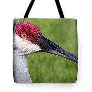 Sandhill Crane Portrait Tote Bag