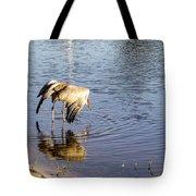 Sandhill Crane Vs Alligator Tote Bag