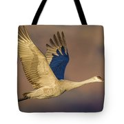 Sandhill Crane Young Adult Tote Bag