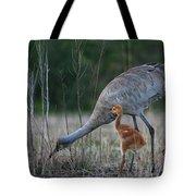 Sandhill Cranes 2 Tote Bag
