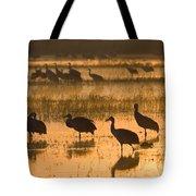 Sandhill Cranes Bosque Del Apache Nwr Tote Bag