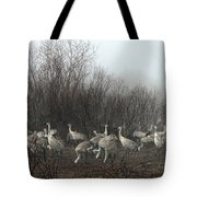 Sandhill Cranes In The Fog Tote Bag