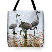 Sandhill Cranes Tote Bag